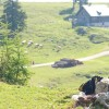 © Region Villach Tourismus